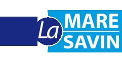 """logo de l'Esat """"La Mare Savin"""""""